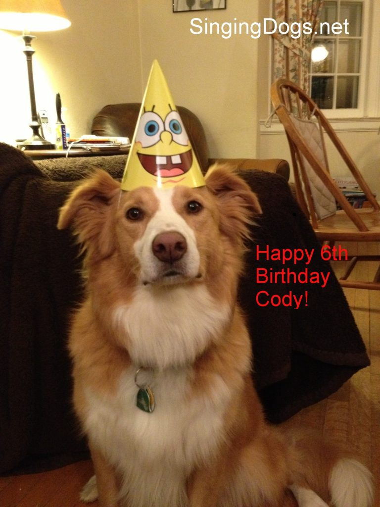 happy birthday cody