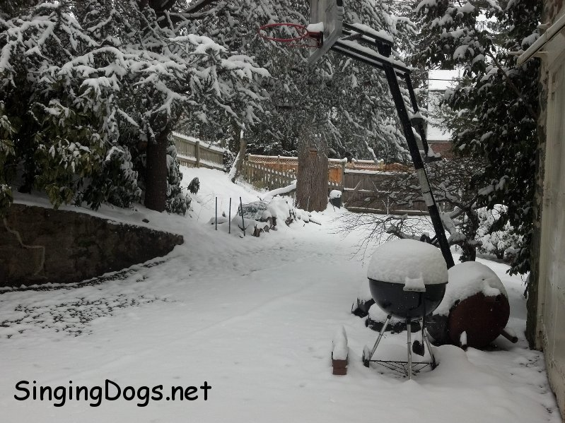 snow maryland